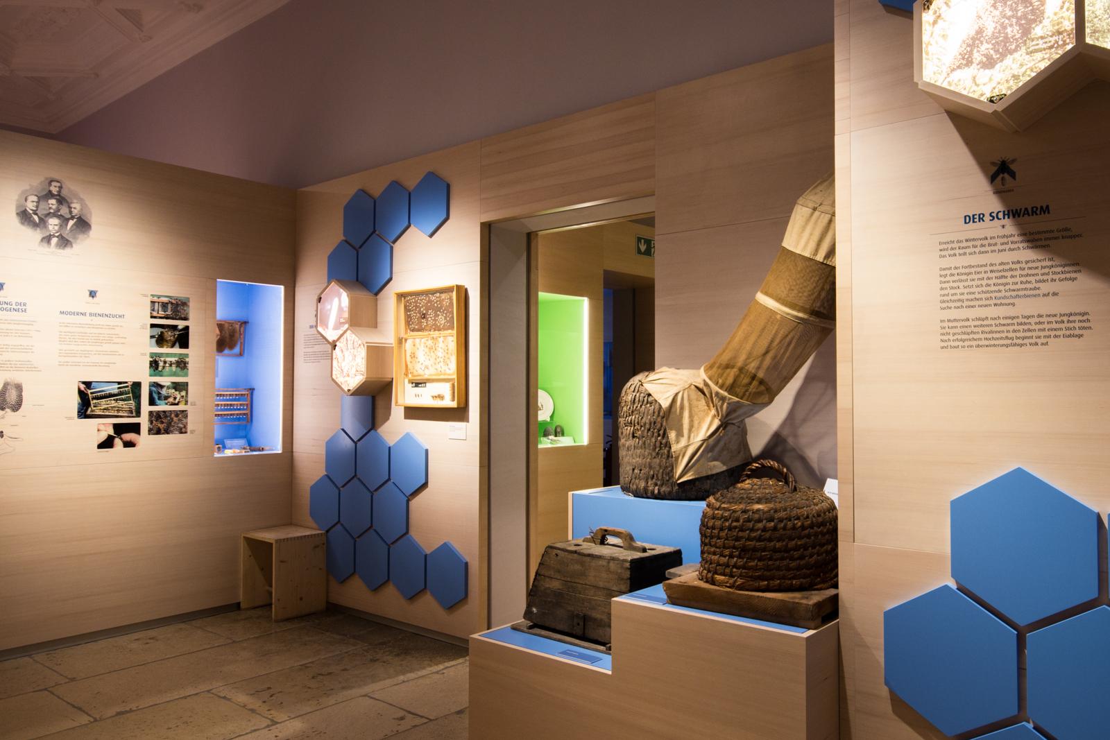 Blick in den blauen Bereich des Bienenmuseums
