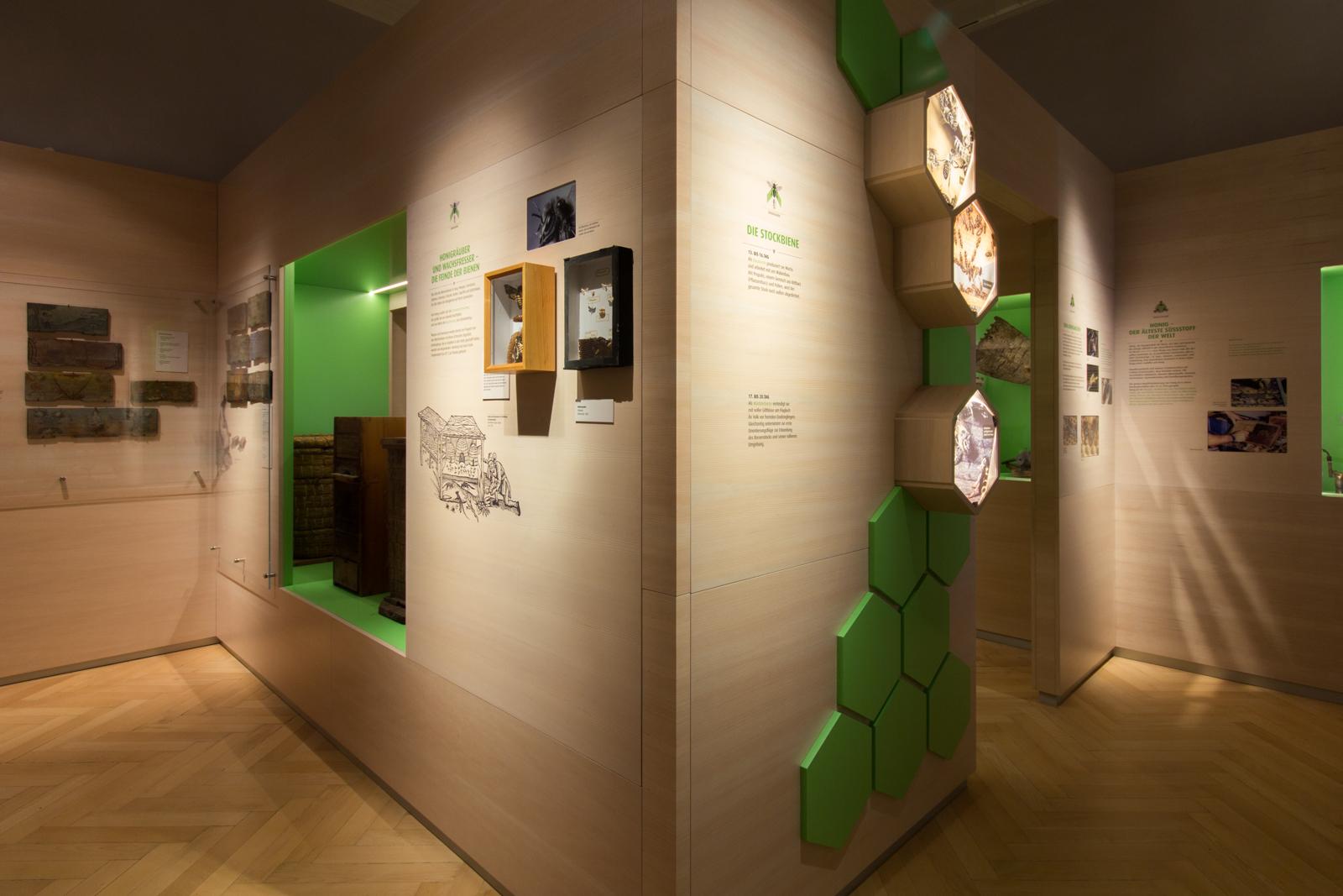 Eine Ausstellungswand mit Exponaten und Text