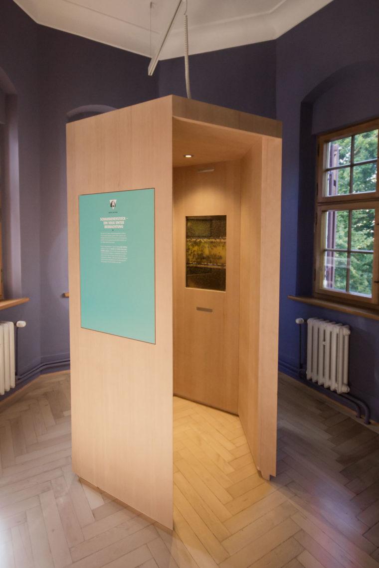 Der echte Bienenstock in der Ausstellung